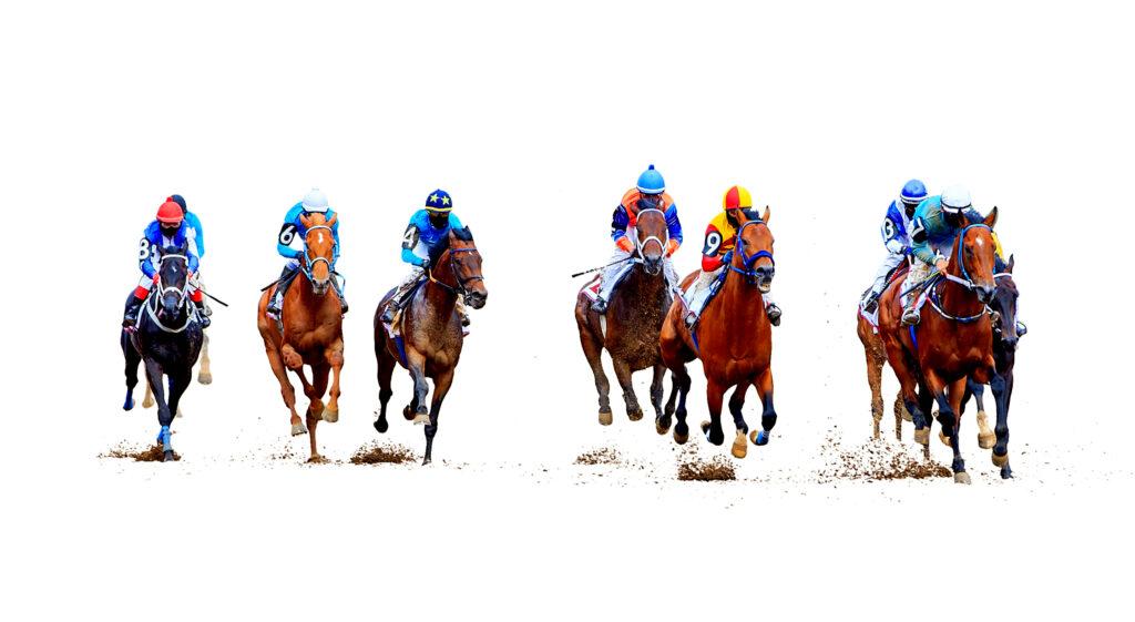India Horse Racing Betting Online | Sportsbettingmarkets